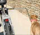 Bike Riding With Your Dog - Whole Dog Journal Article