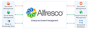 Open-source Content Management Portal Using Alfresco EE