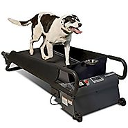 PetZen DogTread Dog Treadmill, Up to 50-Pounds, Medium