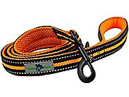 Bubba Paws Premium Comfort Dog Leash, Vibrant Color Accents and Reflective Safety Striping. High Quality, Durable Nyl...