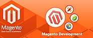 Magento Shopping Cart Website Development | Ecommerce Web Customization Services Company & Agency India