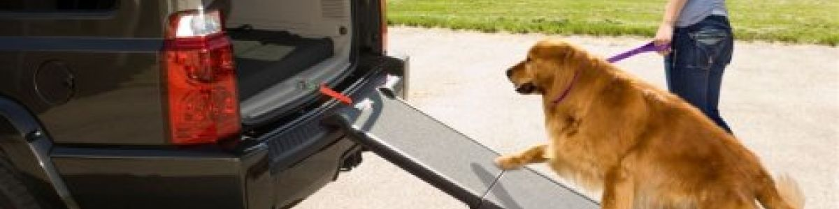 Headline for Best Folding Car Safety Ramps for Dogs 2017