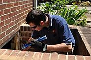 Ensuring Timely Removal of Termites with Termite Inspection Brisbane