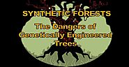 """Synthetic Forests"" Covers the Enormous Risks of GE Trees"