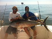Venice Fishing Charters for Tuna | Champion Charters