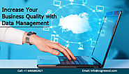 Increase Your Business Quality with Data Management