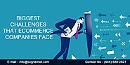 Biggest Challenges that eCommerce Companies Face