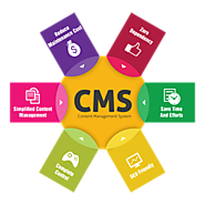 CMS Development Services for Your Business Online