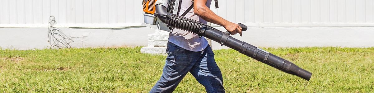 Headline for Top 10 Best Electric Leaf Blower of 2017