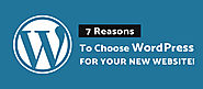 7 Reasons to Choose WordPress for Your New Website!