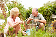 How to Modify Gardening Activities for Grandma or Grandpa