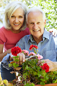 Gardening – A Therapeutic Activity for Older Individuals