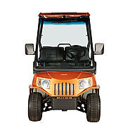 Marshell Boss LSV-E4 Golf Cart For Sale Hope Island