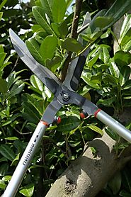 Garden Pruning and Cutting Tools