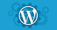 WordPress Plugins & Widgets, WP Plug-ins & Addons - AppJetty