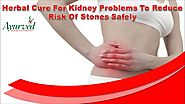 Herbal Cure For Kidney Problems To Reduce Risk Of Stones Safely