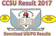 CCSU Result 2017| Download UG/PG Programmes Performance Card