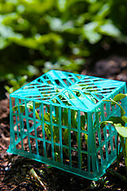 50 Garden Hacks From Your Trash