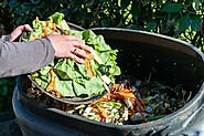 Tips to Make Your Own Organic Compost