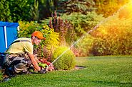 Best Lawn Sprinklers Reviews : You Should Consider For Your Lawn