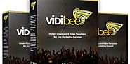 Vidibee Review: Honest review, Discount and Special Bonuses - FlashreviewZ.com