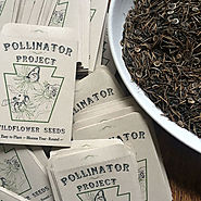 Wildflower Seeds: Pollinator Project