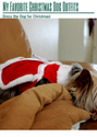 My Favorite Christmas Dog Outfits: Dress the Dog for Christmas!