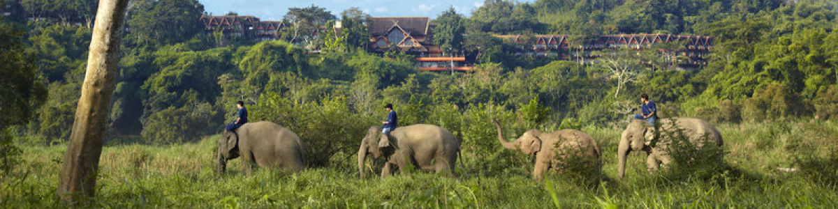 Headline for Top 05 Things to do in Chiang Rai – Culturally Rich Northern Thai City