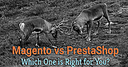 Magento vs PrestaShop: Which One is Right for You?