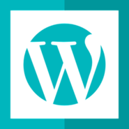 Wordpress Development Services - Wordpress Development Company in India