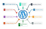Why WordPress CMS Is Popular Among Bloggers As Well As Website Owners?