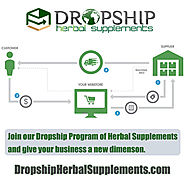 Is Setting Up an Online Business with Dropshipping Program Profitable?