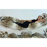 Coyote Fur Hammock