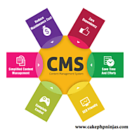CMS Website Development | Web Design and Development Professionals | CakePHP Ninjas