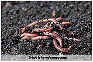 Types of Commercial Composting Systems