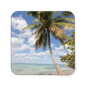Isla Saona - Palm Tree at the Beach Sticker from Zazzle.com