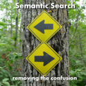 Semantic Search - removing the confusion