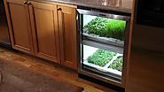 No, that is not a mini fridge. It is an indoor gardening system