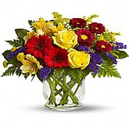 Send flowers, gifts and cakes to Navi Mumbai online with cakeflora.com