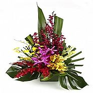Send flowers, gifts and cakes to Bangalore online with cakeflora.com