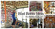 Bird Room Ideas Are Addictive... You Have Been Warned!
