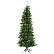 Vickerman 65' Unlit Salem Pencil Pine Artificial Christmas Tree