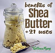21 Shea Butter Benefits and Uses | Wellness Mama