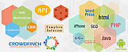 API and Software Solutions