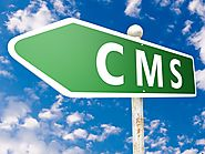 Customized Website through CMS at Openwave Computing New York