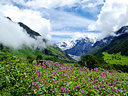 Valley of Flowers UNESCO World Heritage Site for Rich Diversity in Flora and Fauna