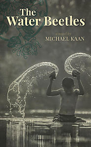 "Jennifer Robson picks Michael Kaan's ""The Water Beetles"""