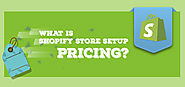 Shopify Store Setup Pricing | Shopify Experts | Metizsoft