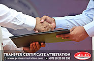 Transfer Certificate Attestation Service | Genius Attestation