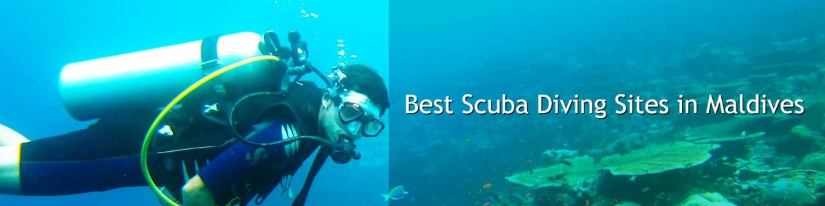 Headline for The Ultimate Scuba Diving Sites in the Maldives – Underwater Escapades